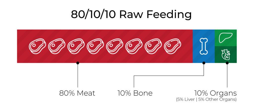 80-10-10-Raw-Feeding-Guide